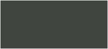 SF HSA logo